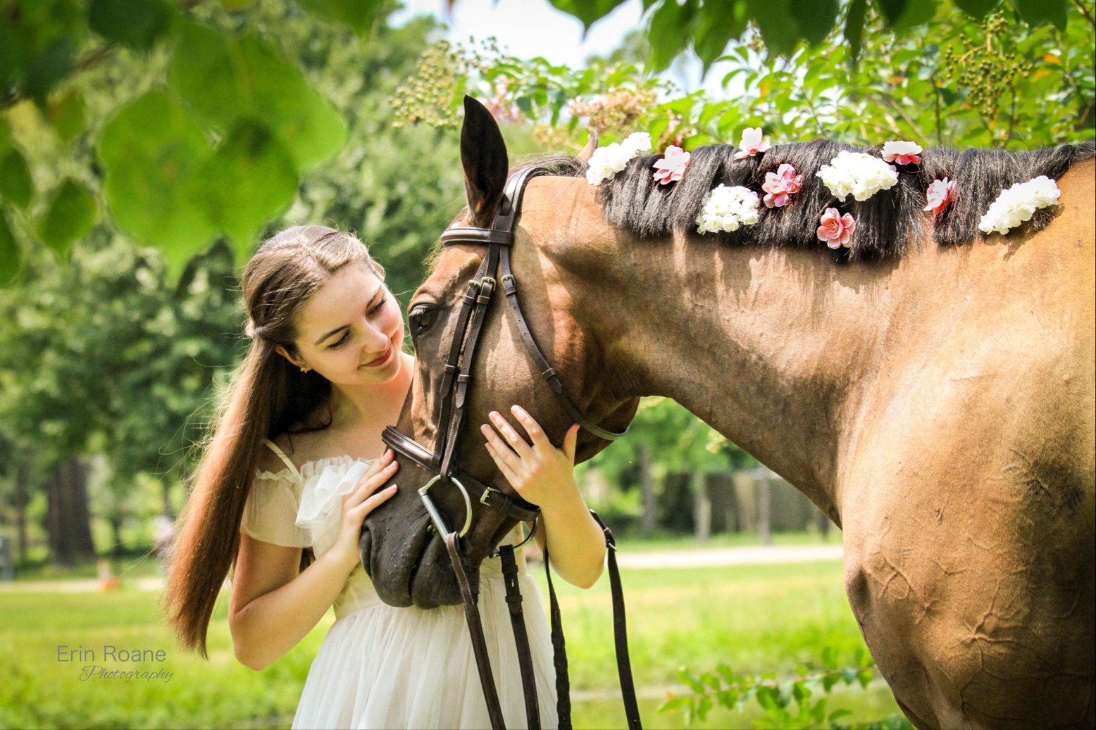 Everything Equestrian 🐴 Image